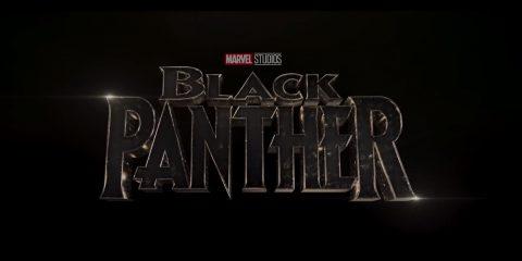 כמובן שאי אפשר בלי הלוגו של הפנתר השחור