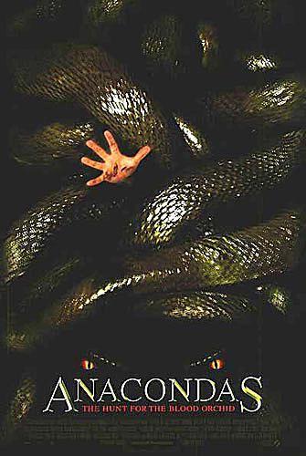אנקונדה - anaconda