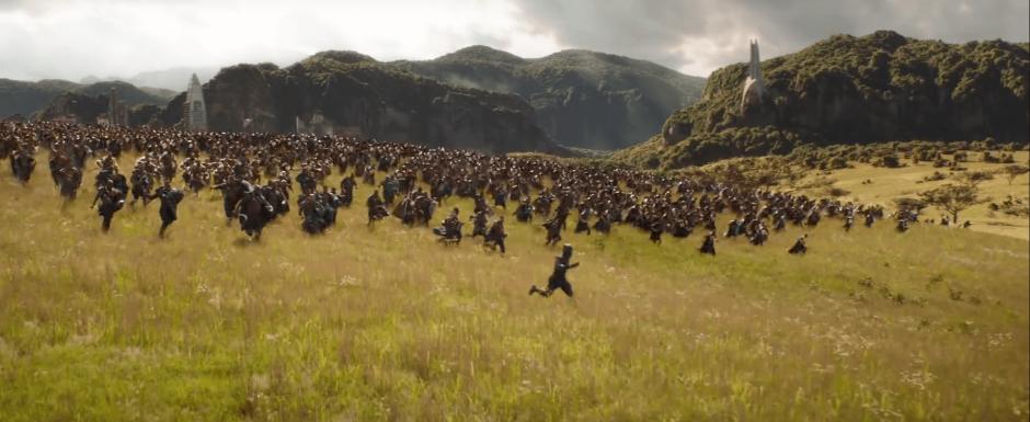 הפנתר השחור והצבא שלו
