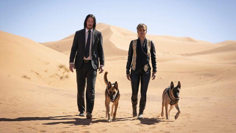 כלבים יותר חשובים מבני אדם בסדרת הסרטים